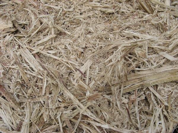 Wytloki z trzciny cukrowej - zblizenie - wypelnienie kopca