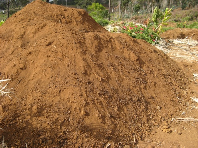 Przygotowana gleba - usuniete korzenie trawy afrykanskiej