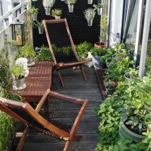 Permakultura Warzywa Kwiaty Owoce w miescie na balkonie, na oknie, na parapecie  -  tak, to mozliwe