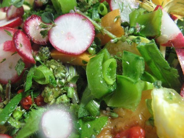 Salatka weganska - zdjecie aury - Magiczna Oaza Permakultura Ogrod BEZ Chemii ekologiczny Marii Bucardi