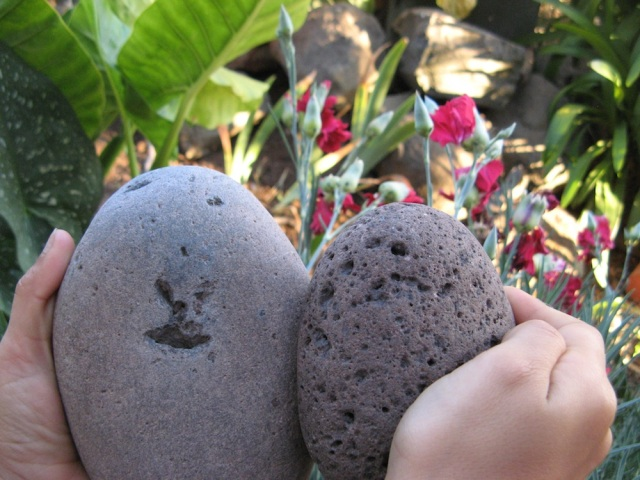 Magiczna Oaza - dzien edukacyjny - blog Marii Bucardi